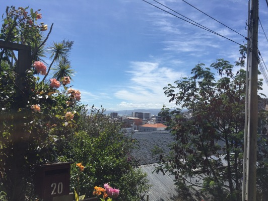 The view as i leave the house of the city center and bay below.