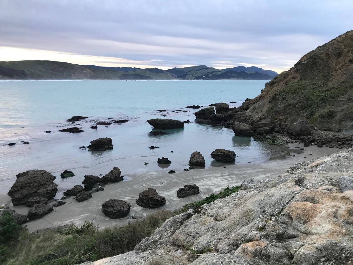 North Island Road Trip Day 1 – Wellington –Dannevirke